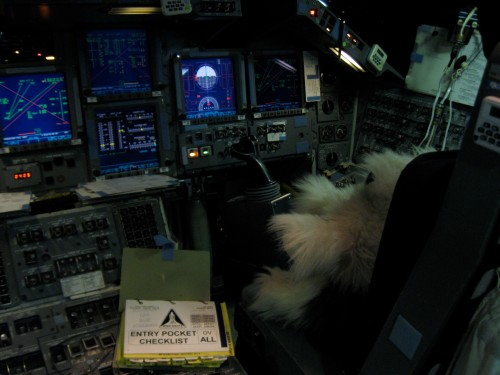Fluffy practices like a real astronaut in the simulator. She learns how the computers and switches work together to fly the Space Shuttle back to earth.